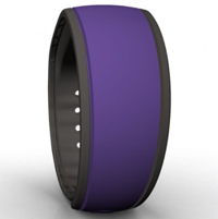 Purple Magic Band Image