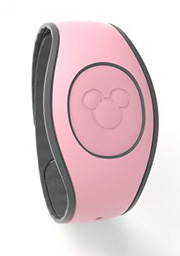 Millenial Pink Magic Band 2